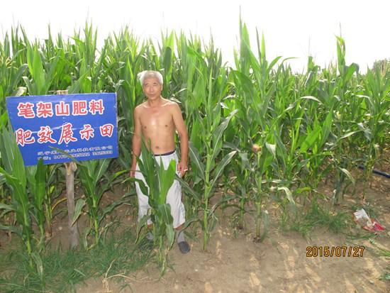 义县市 前杨镇 三家子北地 高长
